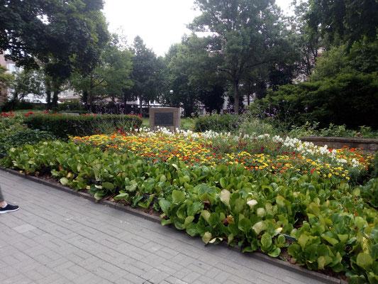 Alter Jüdischer Friedhof in der Rabanusstraße in Fulda heute (2017)