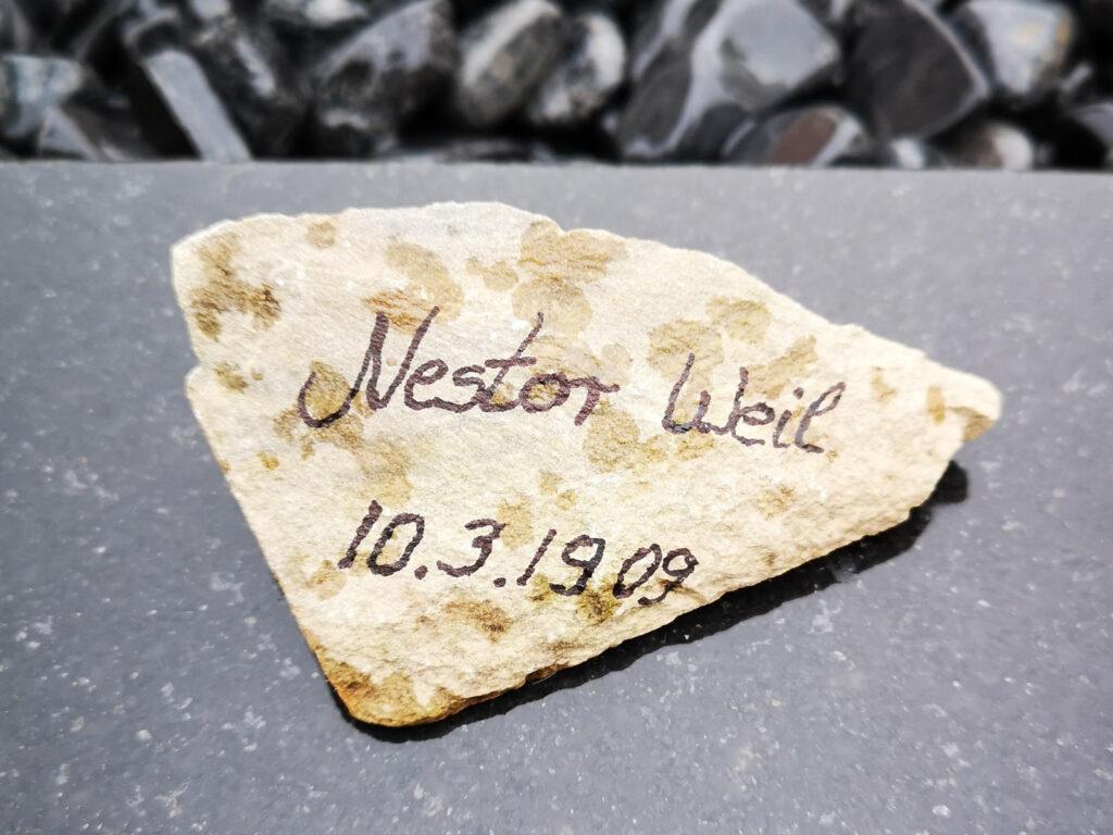 Nestor Weil
